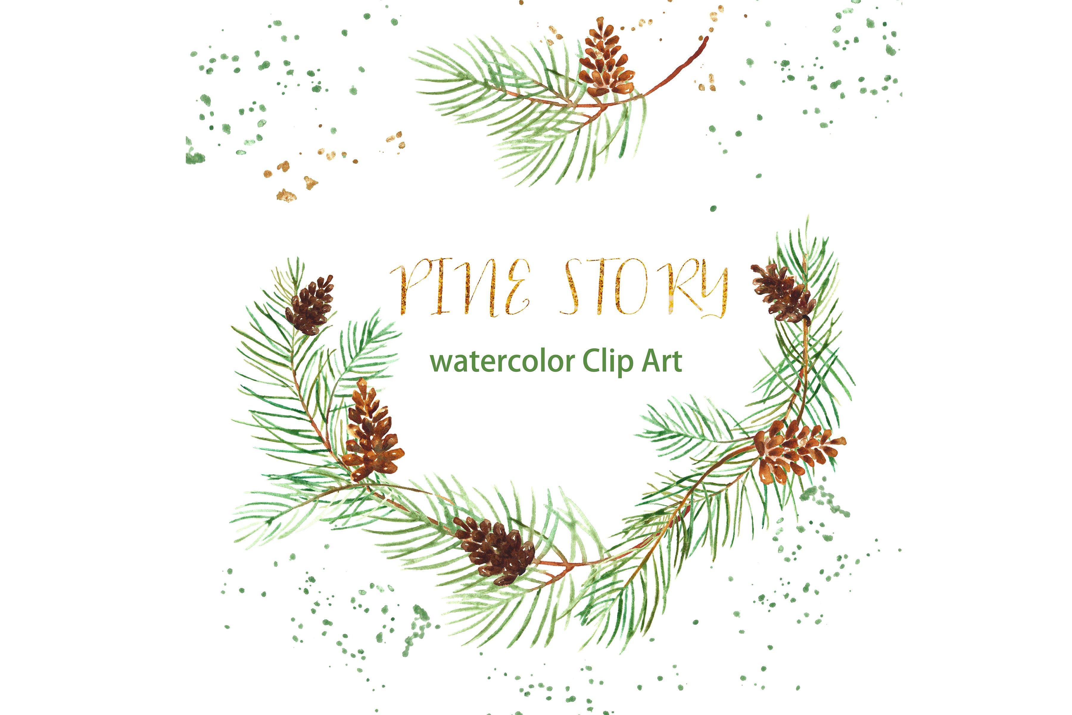 Pine Cone clipart watercolor ~ Market Clip Creative Pine