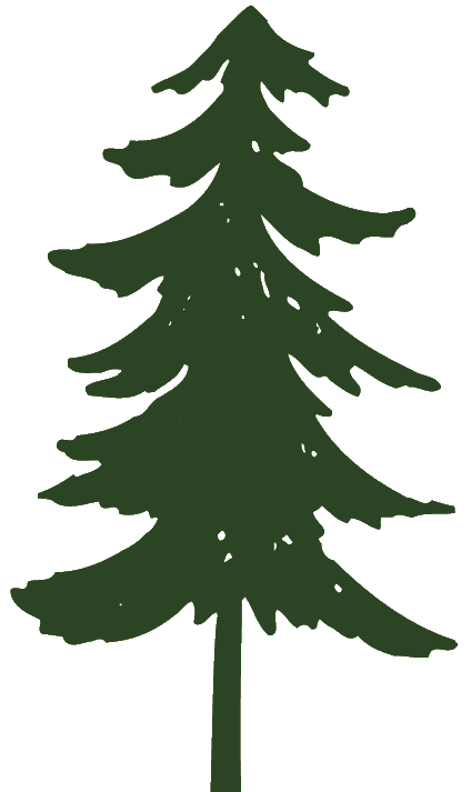 Pine Tree clipart 2 tree Cliparting clipart com
