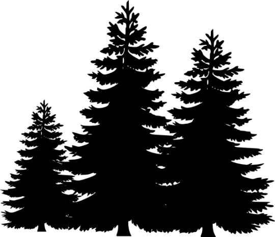 Wilderness clipart group tree Pine #24529 Clipartion on com