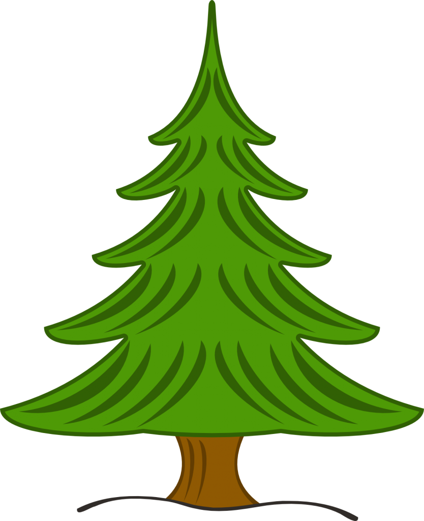 Pine clipart #4