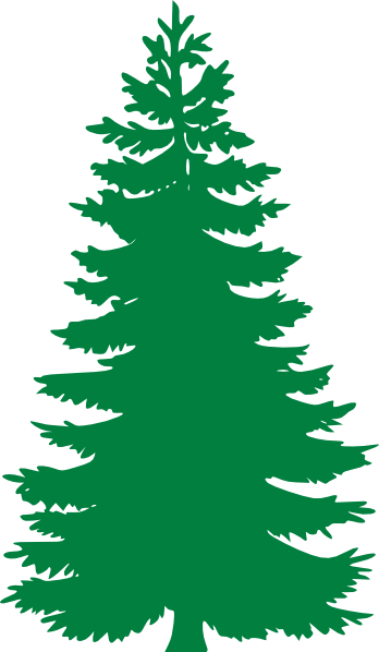 Pine Tree clipart Clipart Winter Clipart Pine Images