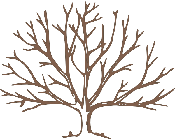 Brown clipart bare tree Art pine free compdclipart Gallery