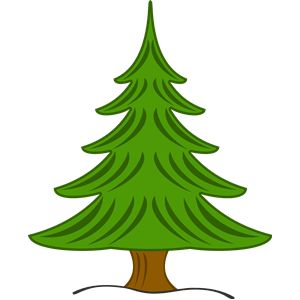 Pine Tree clipart fine 206 Find best Tree Clipart