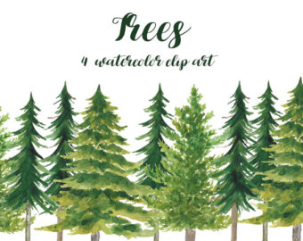 Pine Tree clipart fir tree Watercolor 3 clipart Pine Pine