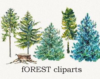 Pine Tree clipart fir tree Fir clipart clipart forest clipart