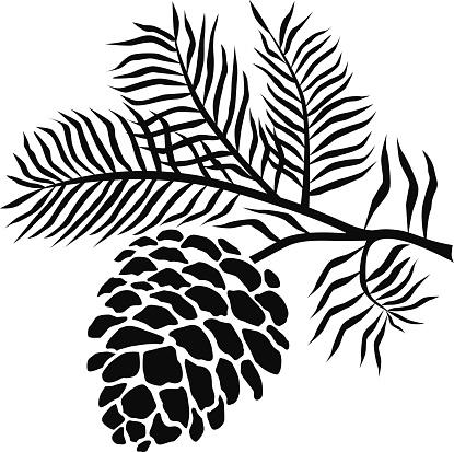 Pine Cone clipart pine leaves  Pine Black Clipart Cone