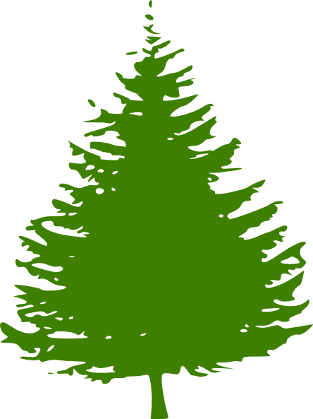 Pine Tree clipart two tree Image com  vector this