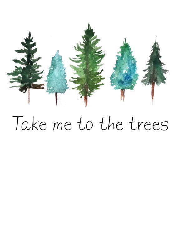 Drawn pine tree watercolor Take art the to Pinterest
