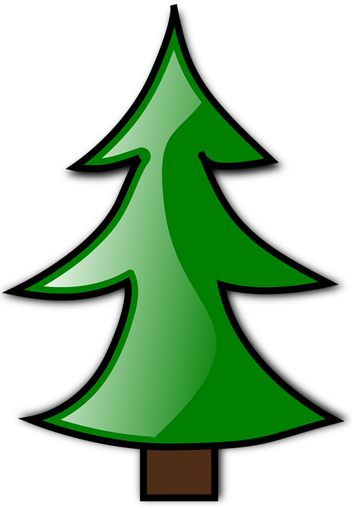 Pine Tree clipart redwood Pine Tree Max Pixel Conifer