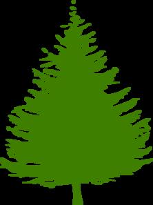 Pine Tree clipart transparent Online Pine vector Tree Clip