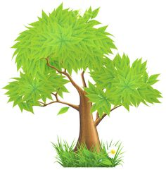 Pine Tree clipart transparent ImagesPainted Happiness · Tree Tree