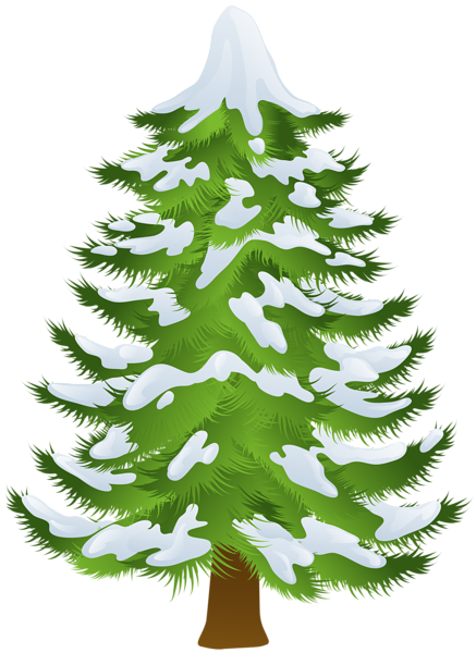 Pine Tree clipart transparent Gallery PNG PNG Pine Art
