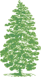 Pine Tree clipart tree border Clip Tree Pine art Green