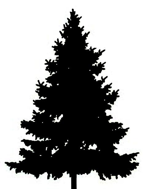 Pine Tree clipart tree silhouette Pine silhouette tree Cliparting com