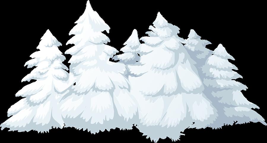 Pine clipart winter Trees Clip Clip Public Free