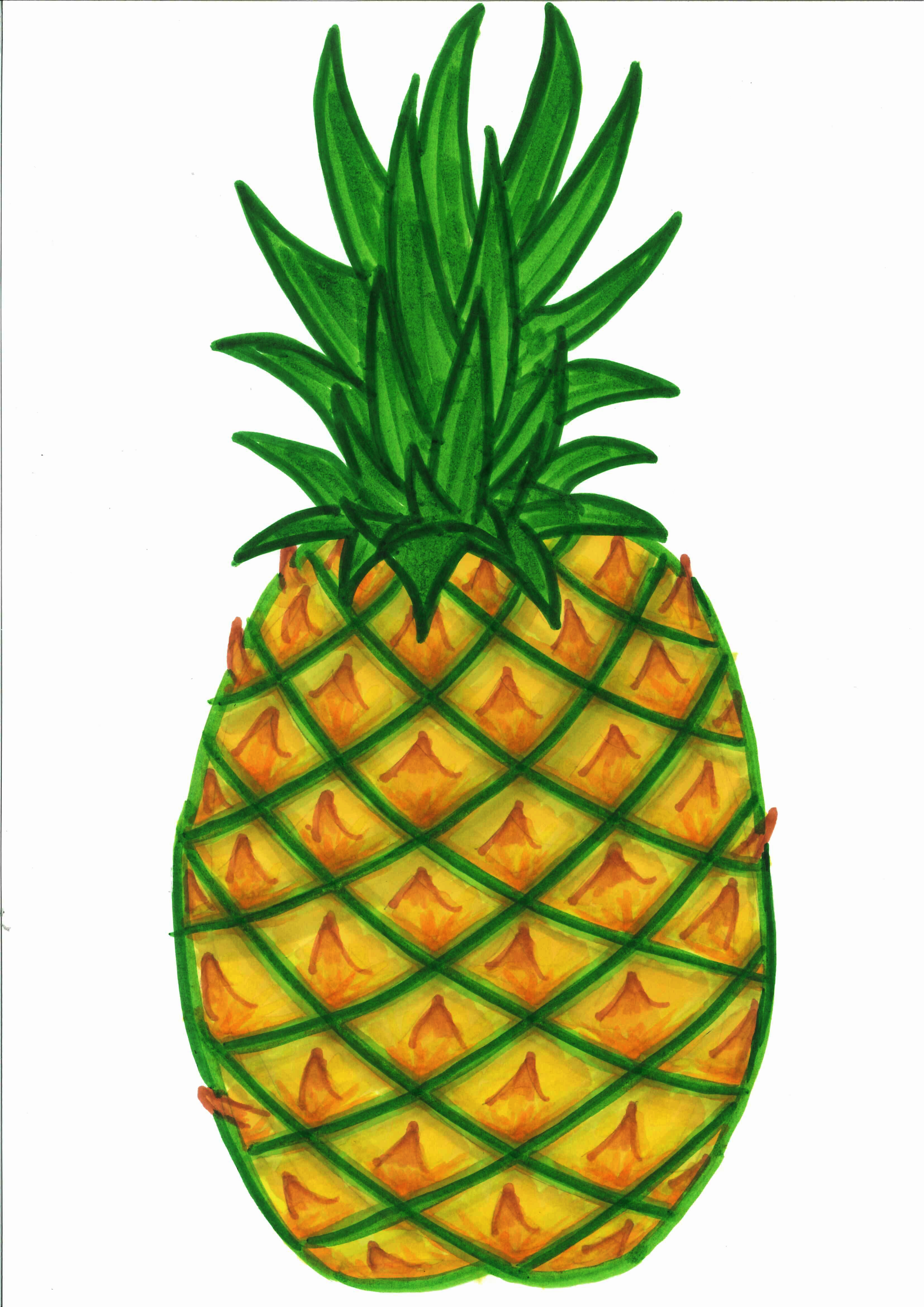 Plant clipart pine apple Clipart Clipart White pineapple%20clipart%20black%20and%20white Black