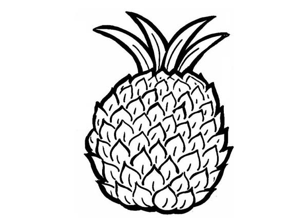Pineapple clipart coloring page Clipart Page Coloring Clipart Info