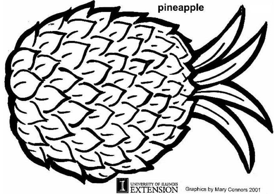 Pineapple clipart coloring page Free coloring page pineapple pineapple