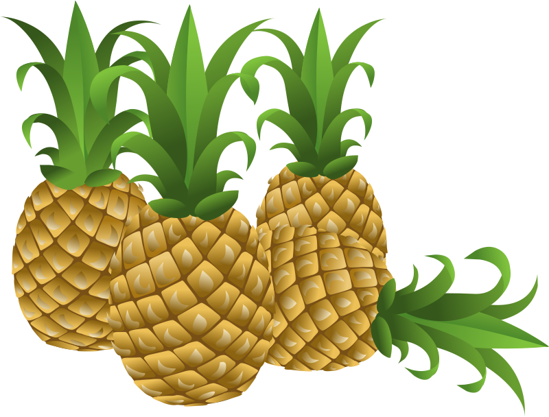 Plant clipart pine apple  Cartoon Pineapple Related Pineapple
