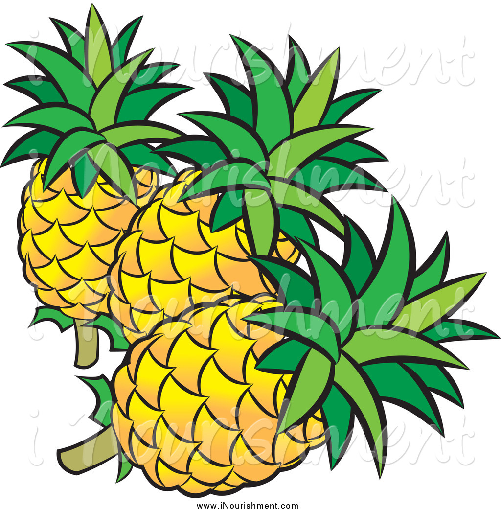 Plant clipart pine apple Clip Plant free art pineapple