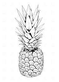 Pineapple clipart two Google clipart best 47 pineapple