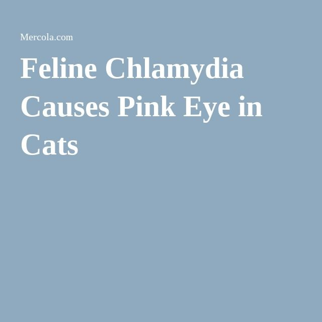 Pink Eyes clipart eye pain On Pinterest of Causes Pink