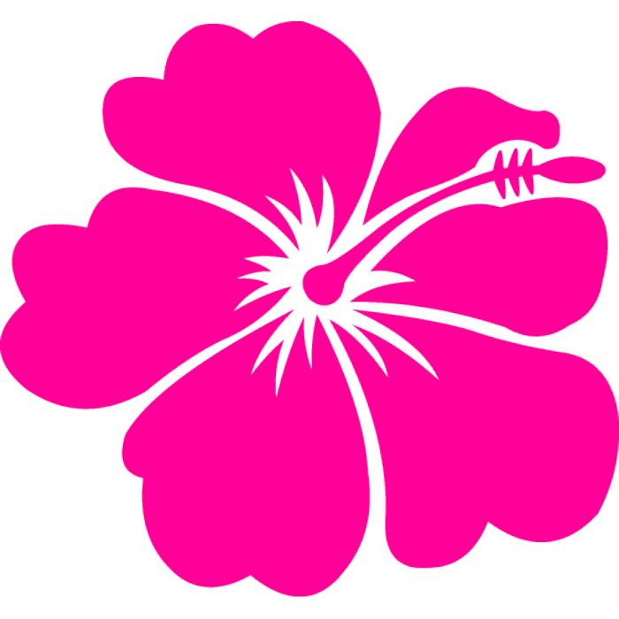 Buttercup clipart hawaiian flower Pink Reference Art  Free
