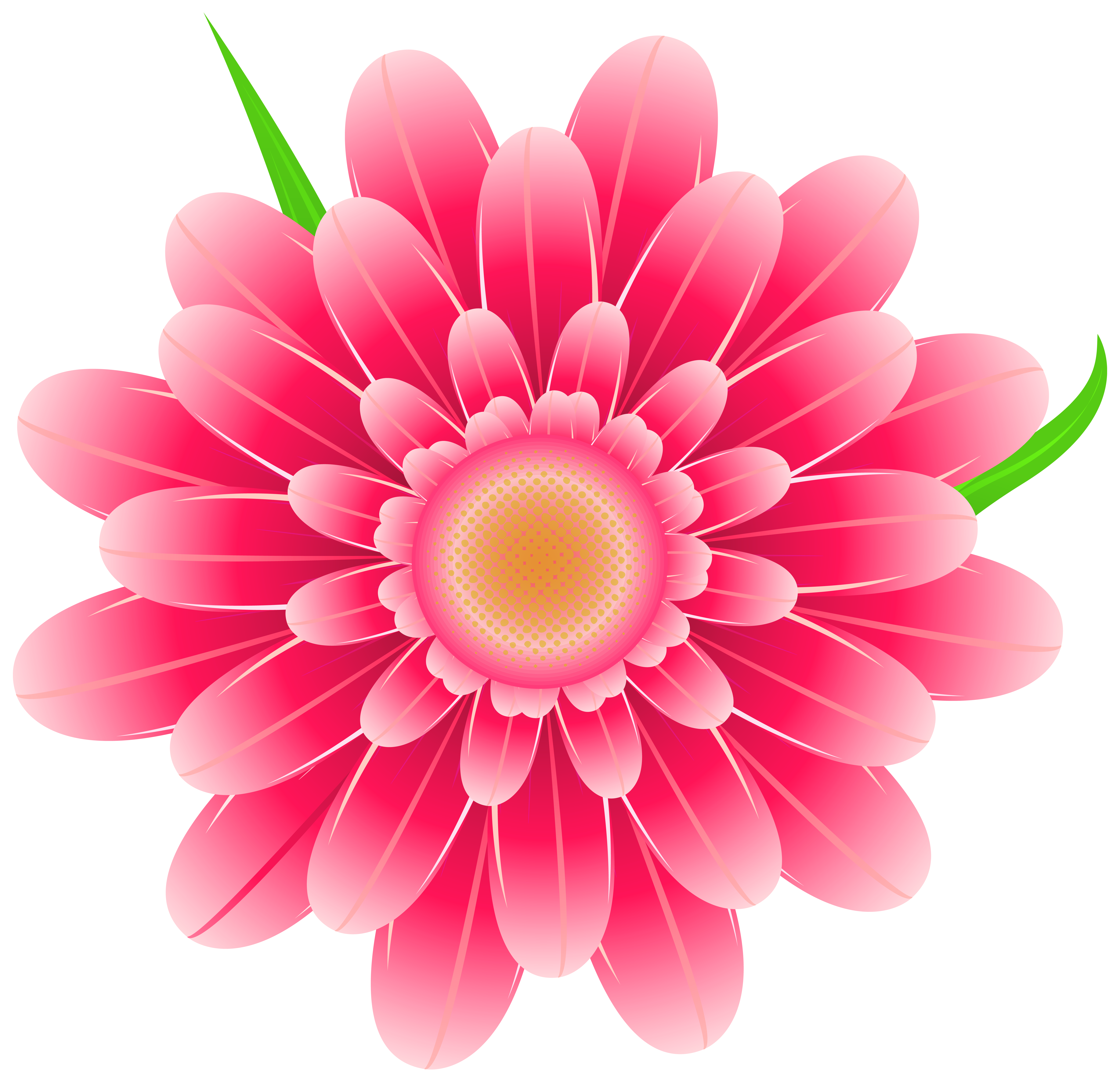 Pink Flower clipart Gallery  Clipart Pink Flower