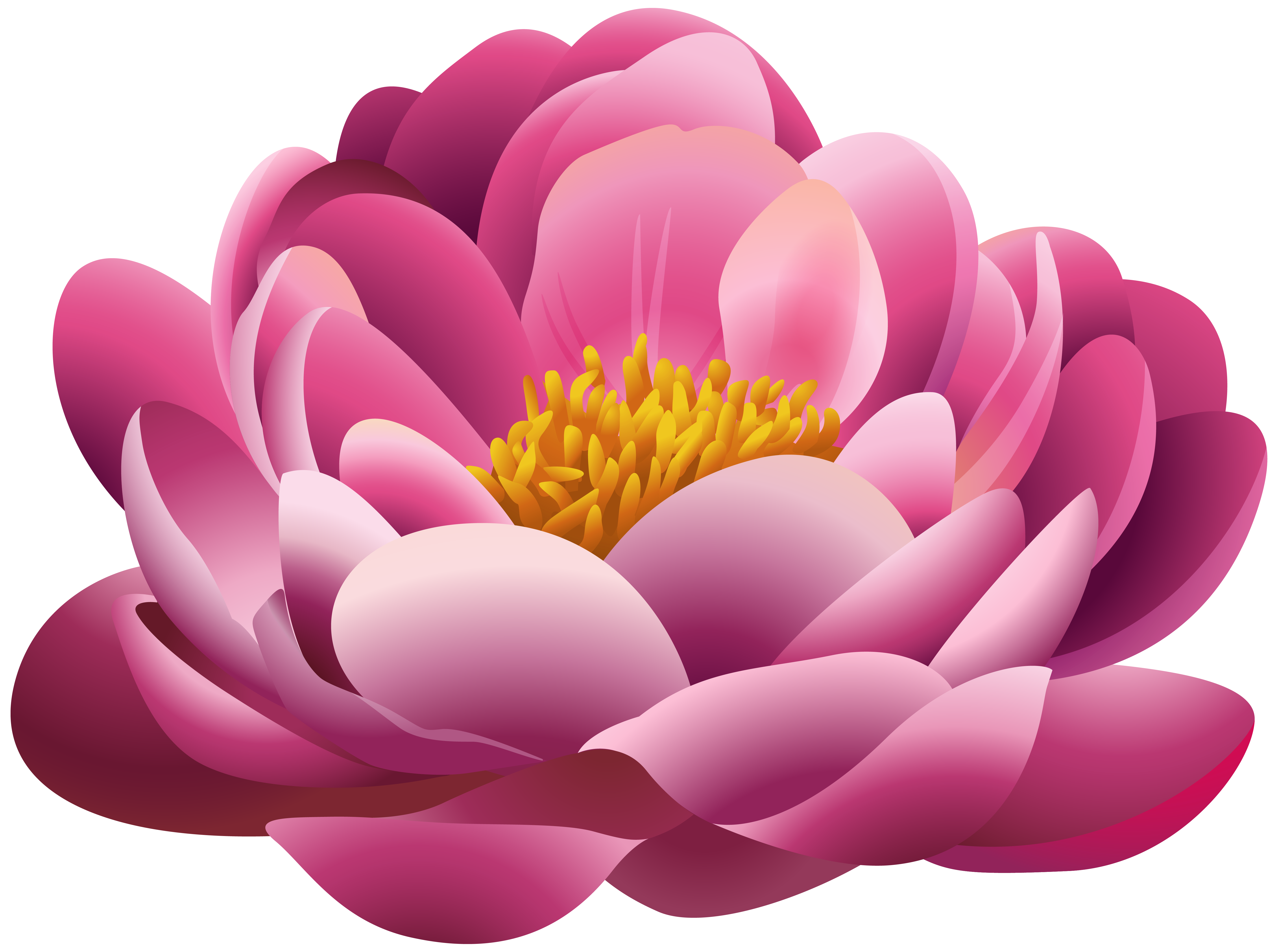Beautiful clipart beautiful flower Flower Pink png PNG Pink