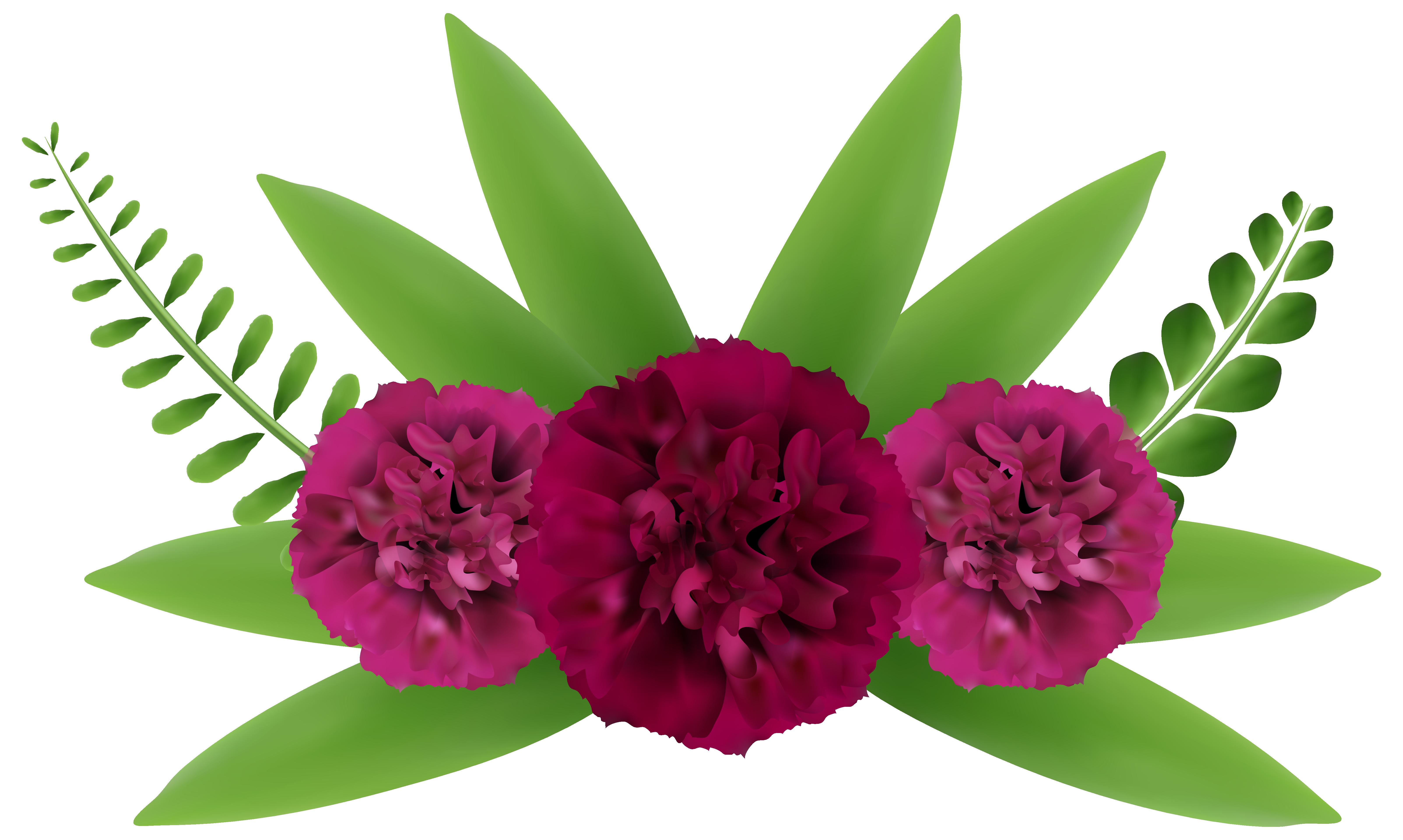 Beautiful clipart beautiful flower Art Clip Gallery Beautiful full