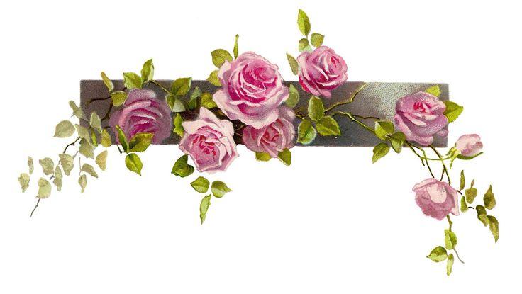 Pink Flower clipart flower boarder Border clip pink vintage free