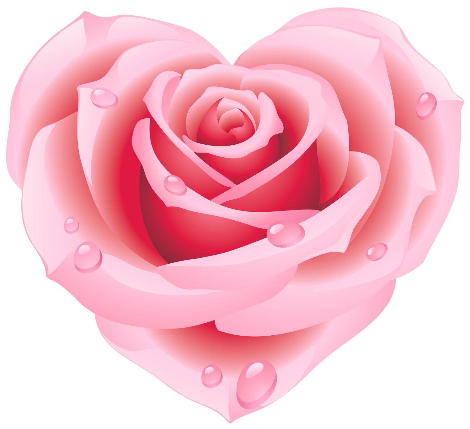 Pink Rose clipart pink heart Clipart Heart Clipart flowers &