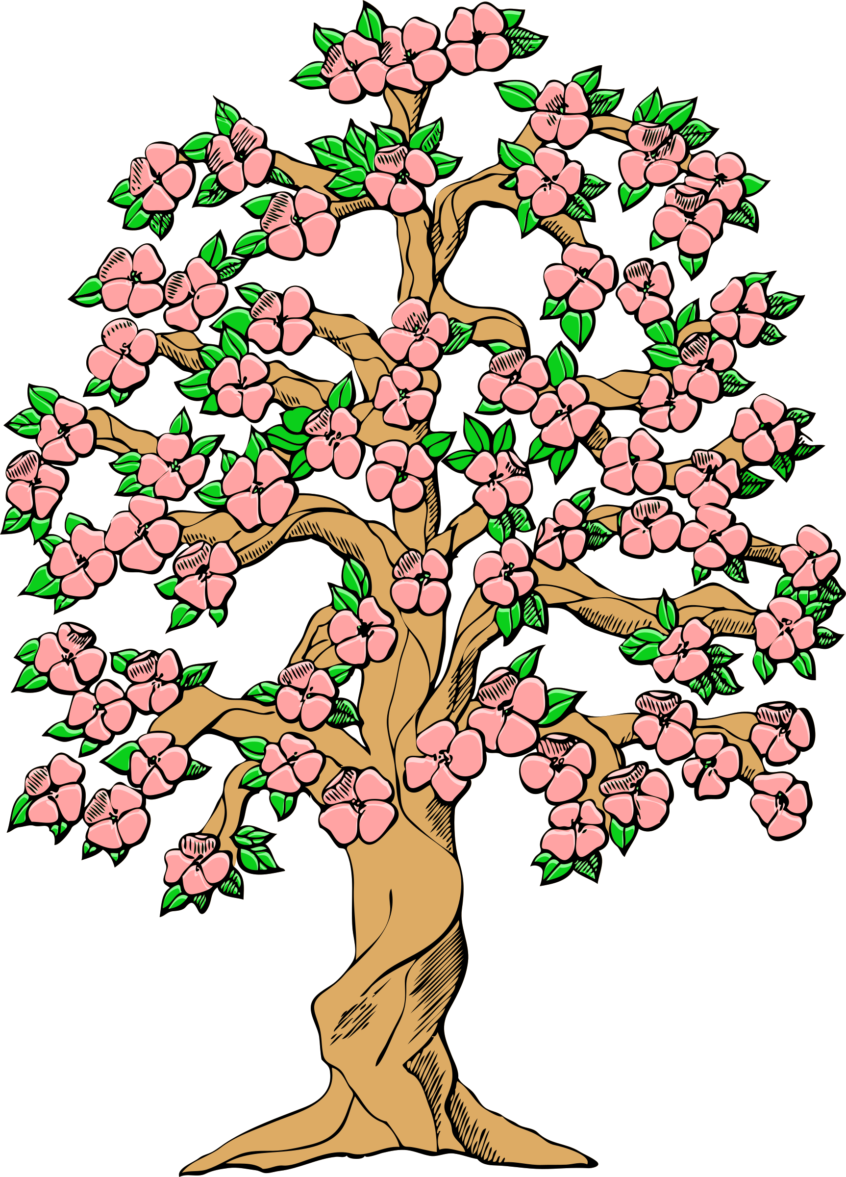 Cherry Tree clipart flowering tree Color flowering tree flowering color