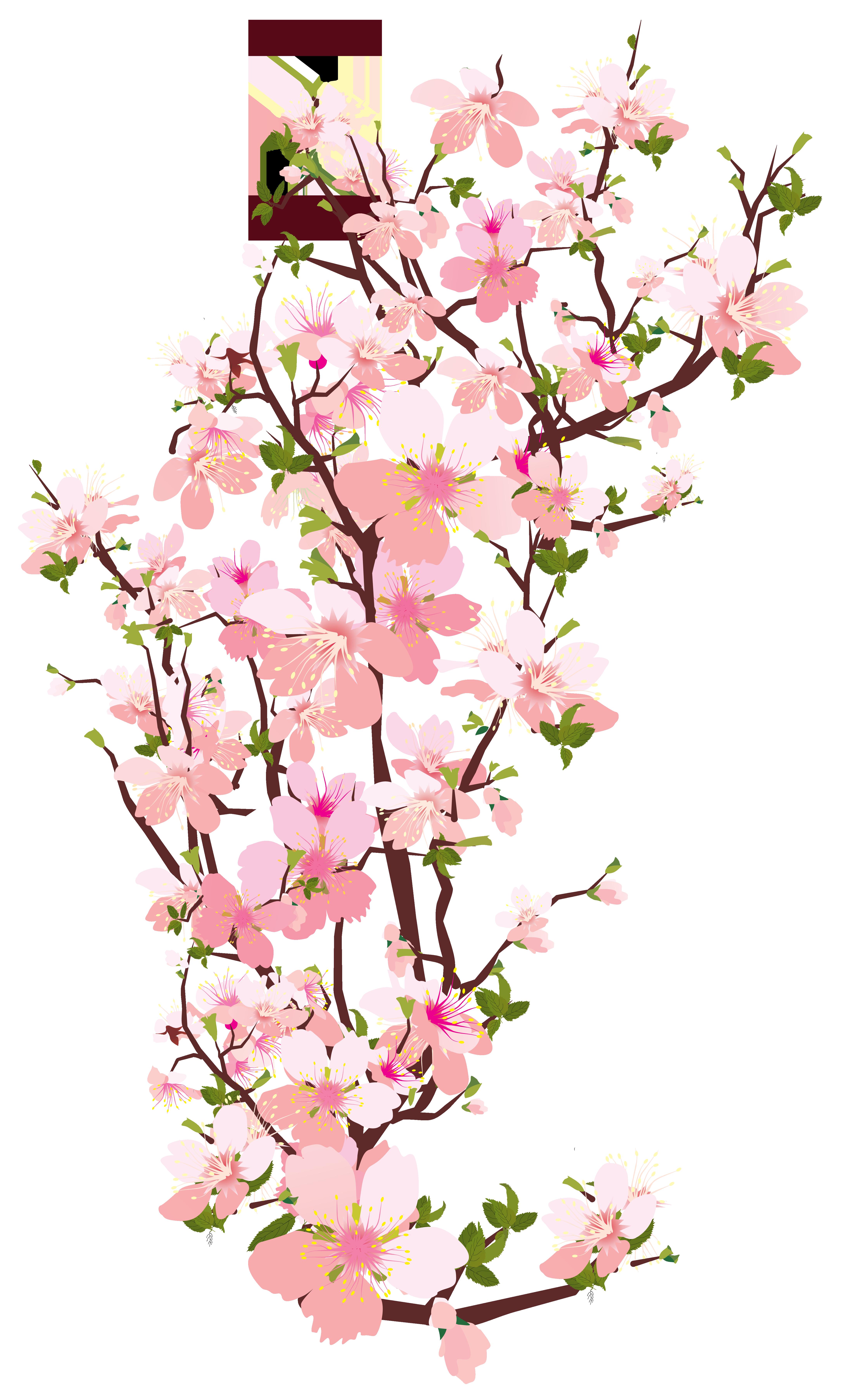 Pink Flower clipart flowering tree Tree Spring Branch Art Clip