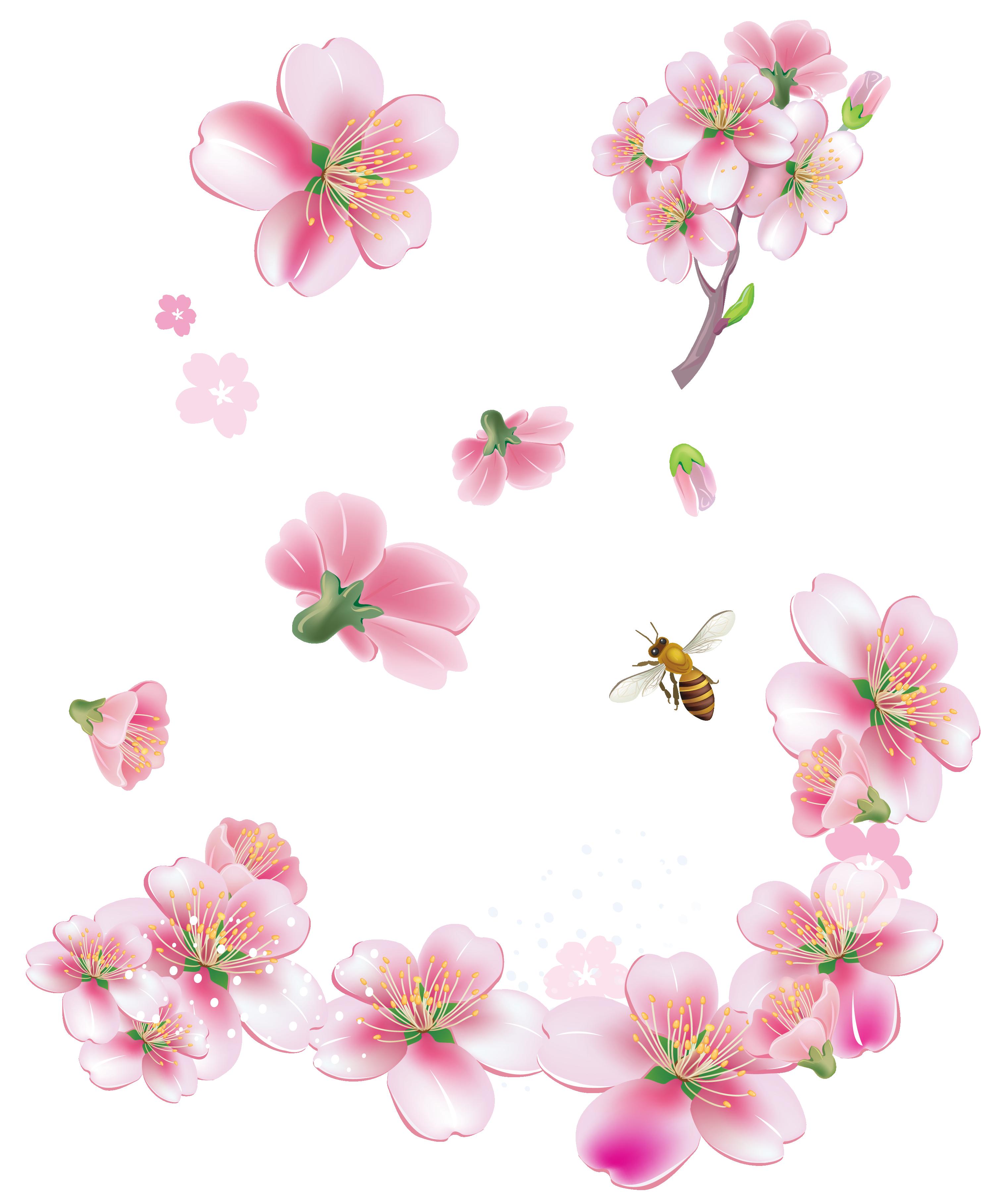 Pink Flower clipart flowering tree Free  PNG Trees is