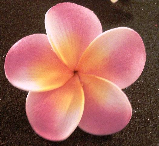 Pink Flower clipart hawaiian flower Pink flower clip Free Download