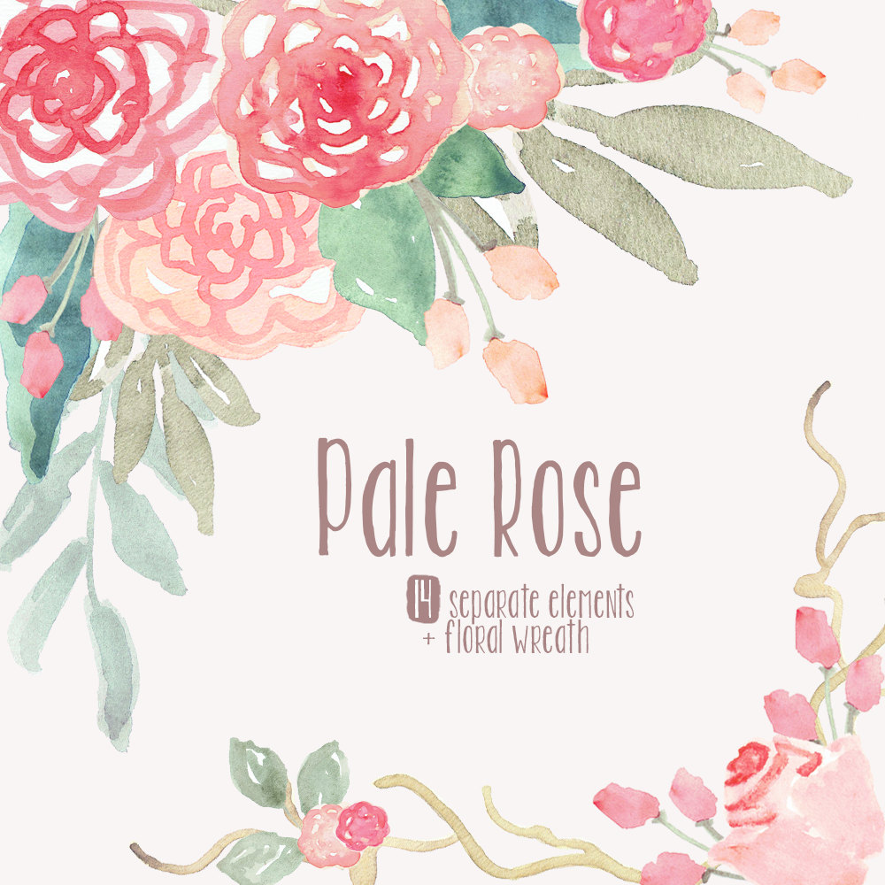 Pink Flower clipart light pink rose And Watercolor clipart Pale Art