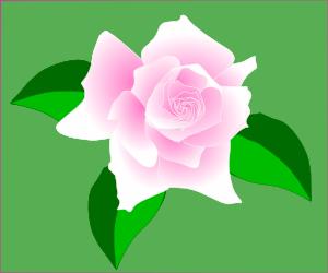 Pink Flower clipart light pink rose Art Rose Clip Pink Copyright