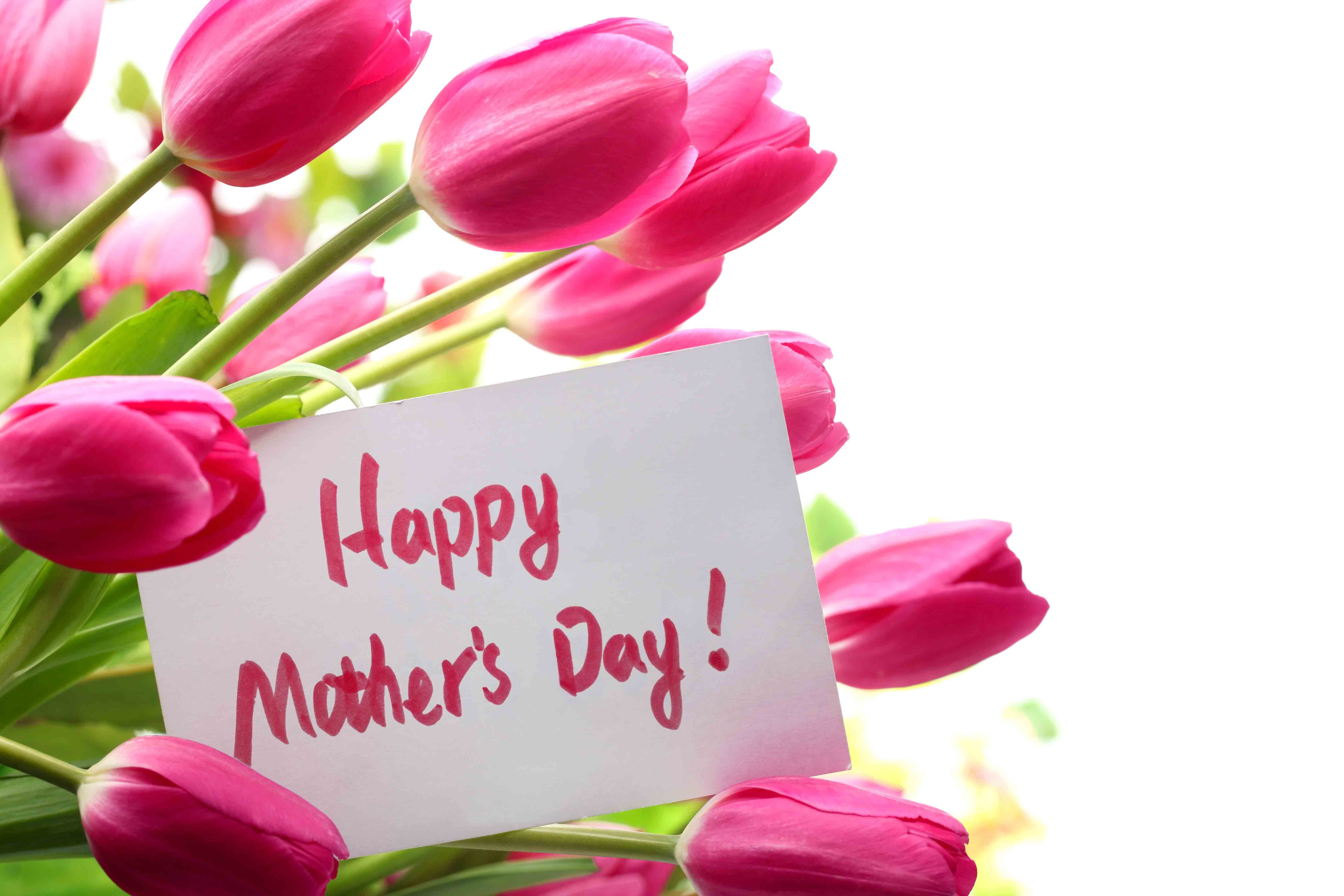 Pink Flower clipart mother's day Day Law Happy Day You