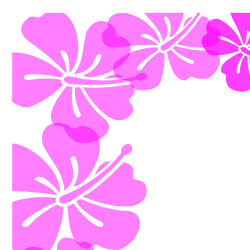 Pink clipart hibiscus flower Hibiscus and Art Borders Free