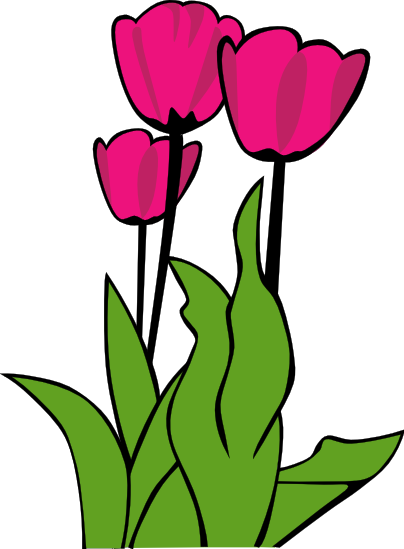 Pink Flower clipart pink tulip Clipart Images Clipart Tulip Art