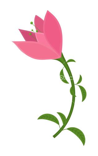 Pink Flower clipart pink tulip Image Vector Pink Design Stock