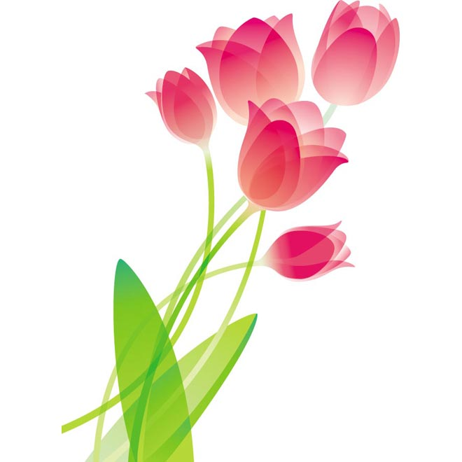 Pink Flower clipart pink tulip Flower Pink bouquet glossy illustration