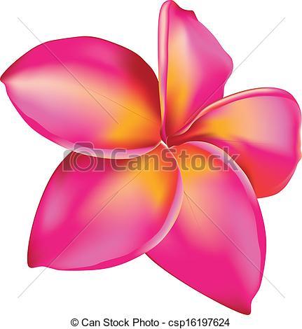 Pink Flower clipart plumeria Plumeria  Illustration Pink flower