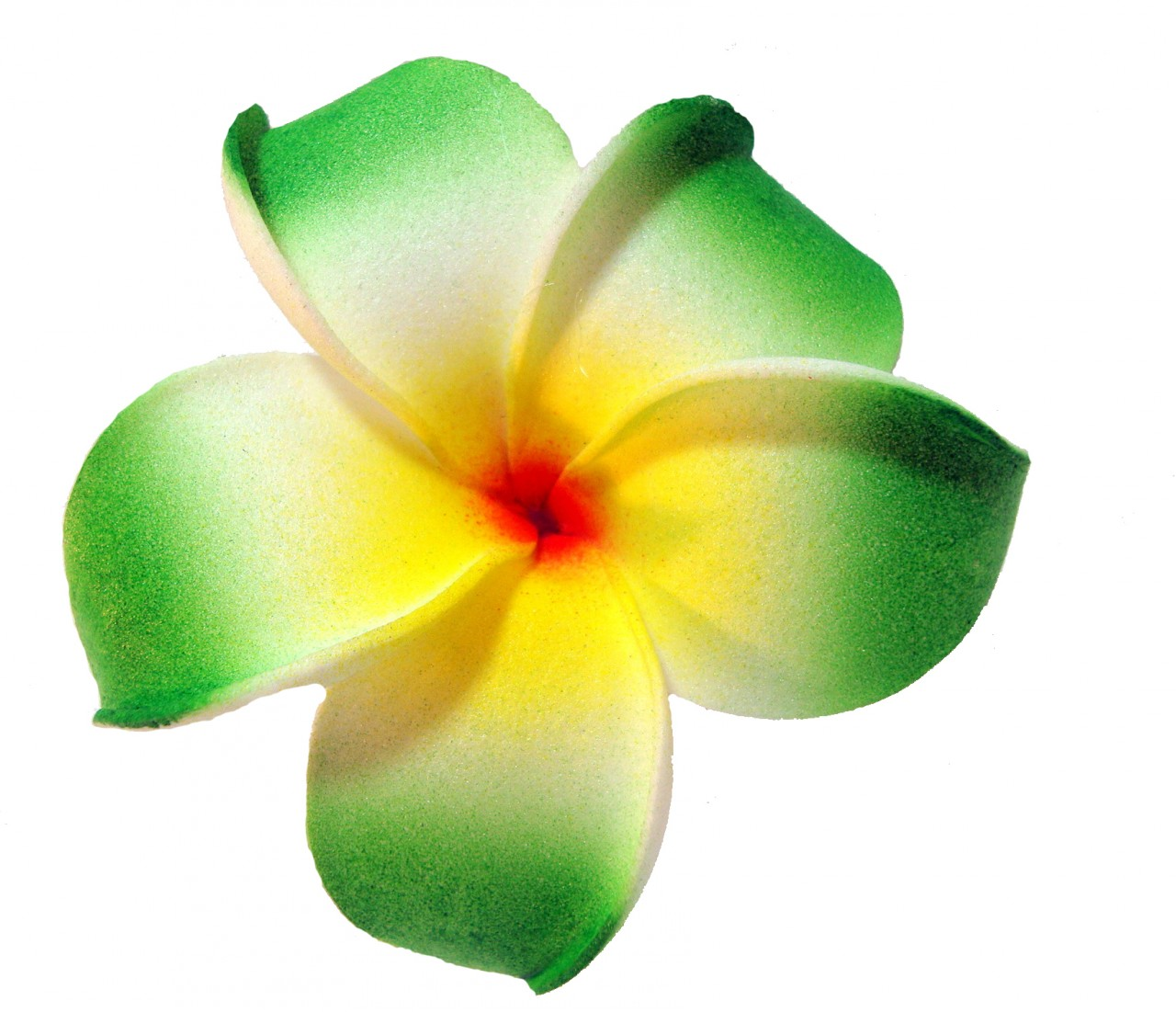 Yellow clipart plumeria Drawings Download clipart Plumeria Plumeria