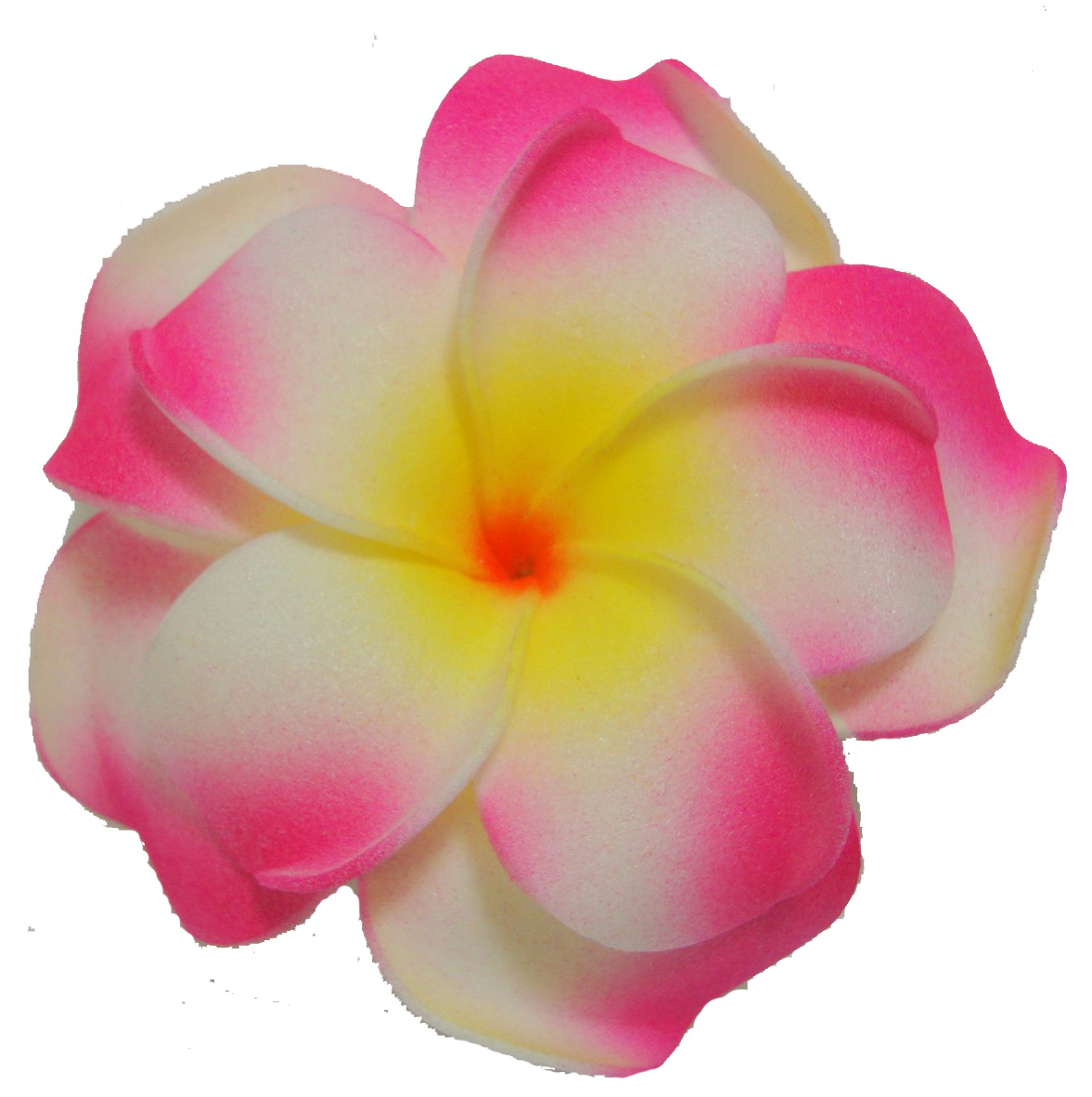 Pink Flower clipart plumeria Clipart flower Glass Vector Collection