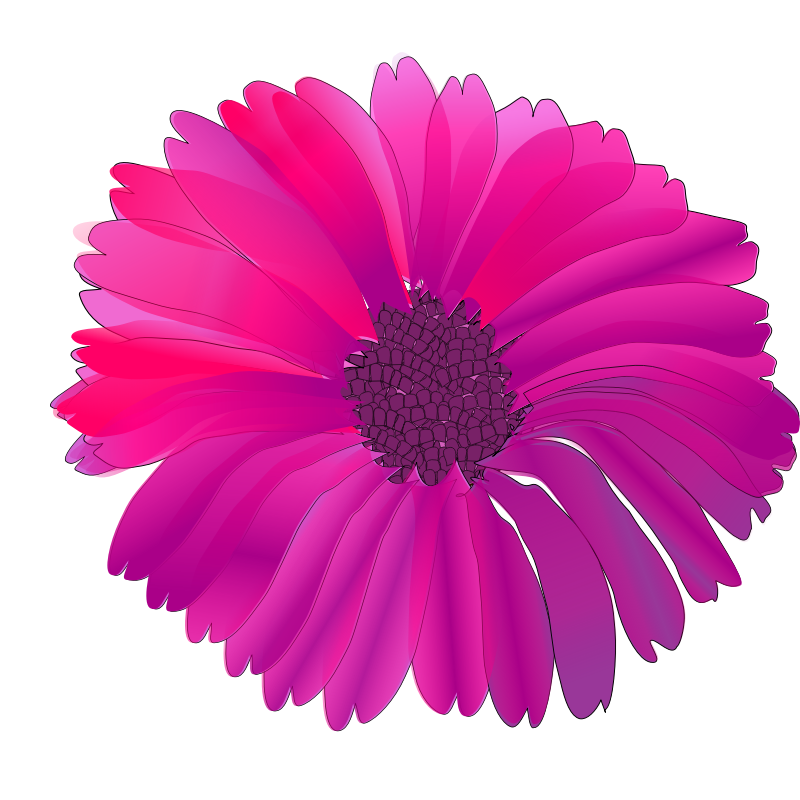 Pink Flower clipart real Library Pink Images Clipart pink