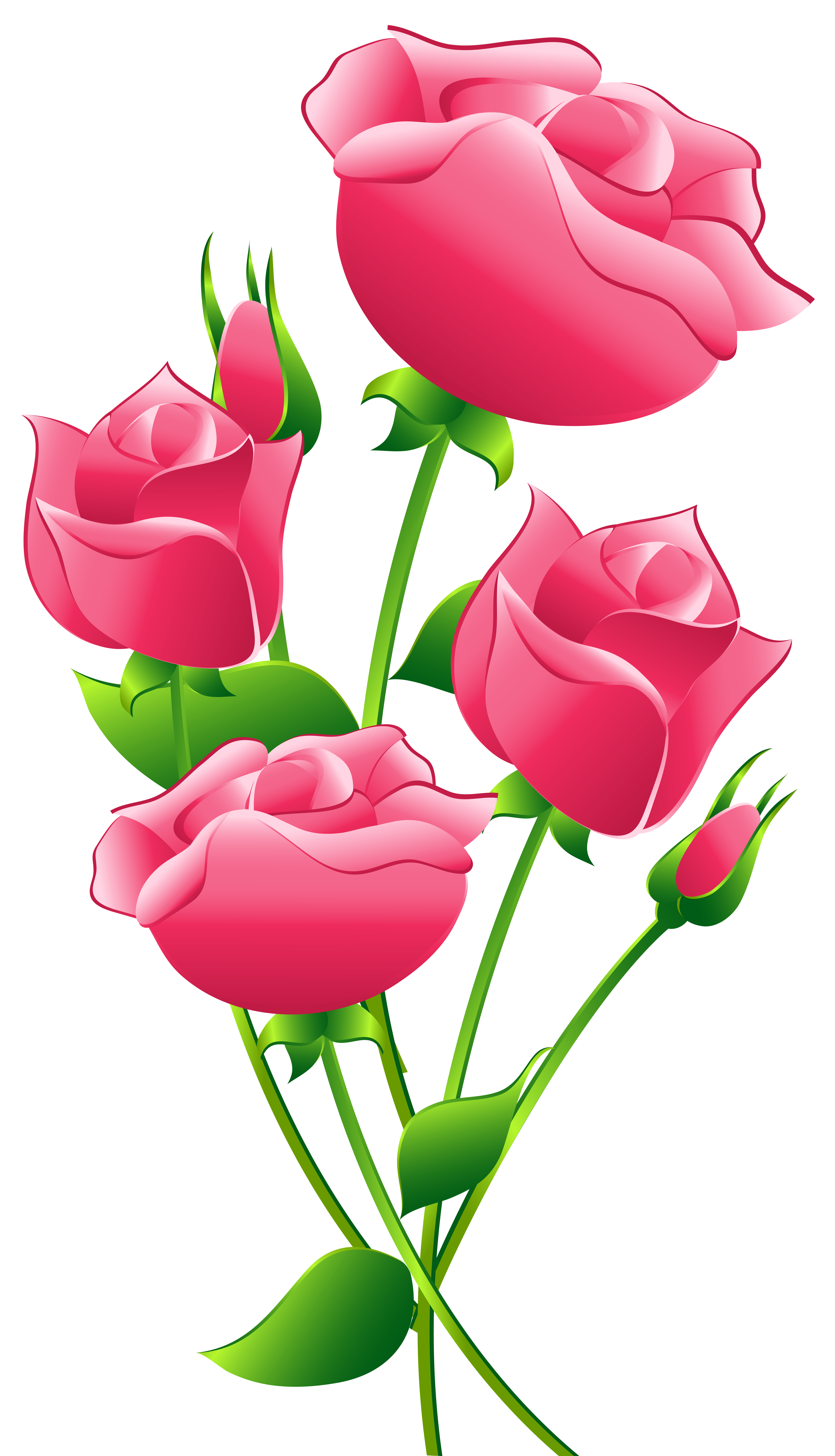 Rose clipart pink rose #8