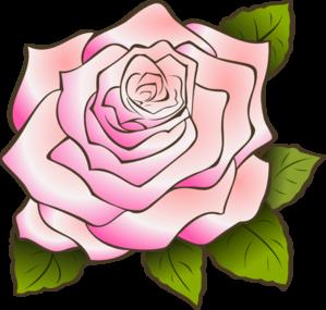 Rose clipart pink rose #3