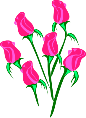 Pink Rose clipart #11